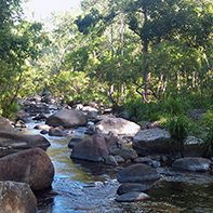murray upper boulders in stream horizontal square
