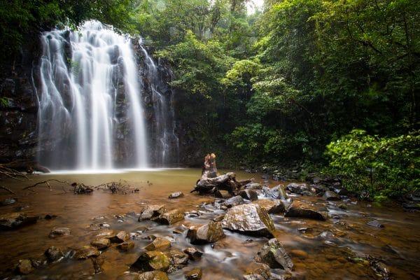 queensland waterfalls feature image
